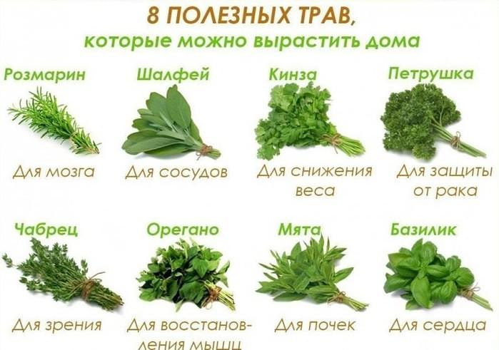 http://s9.uploads.ru/dvJba.jpg