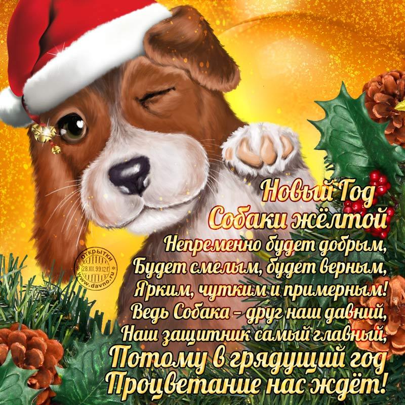 http://s9.uploads.ru/es8wk.jpg