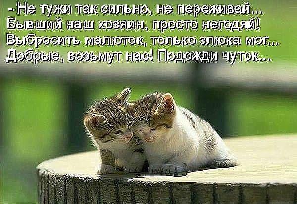 http://s9.uploads.ru/evEyb.jpg