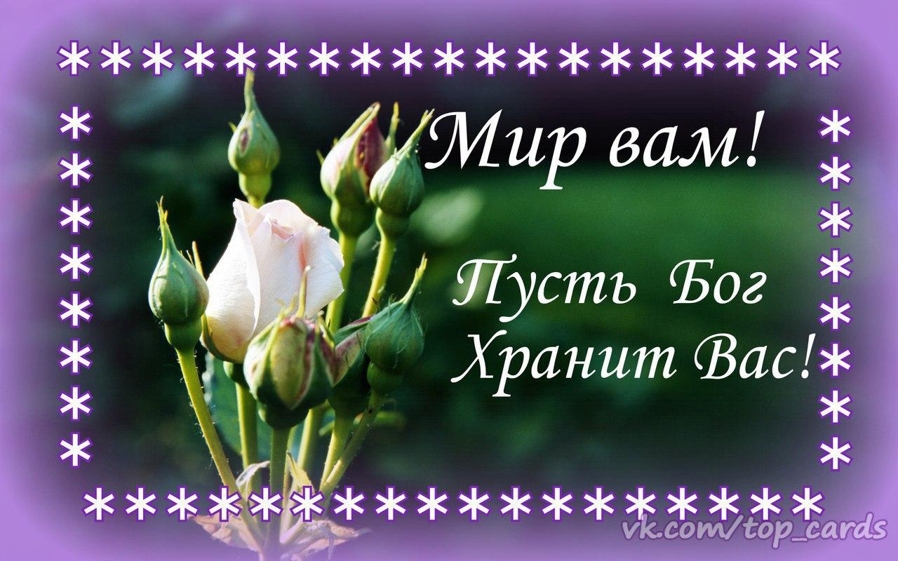 http://s9.uploads.ru/fJ6VK.jpg