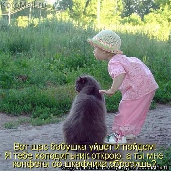 http://s9.uploads.ru/gdjJ5.jpg