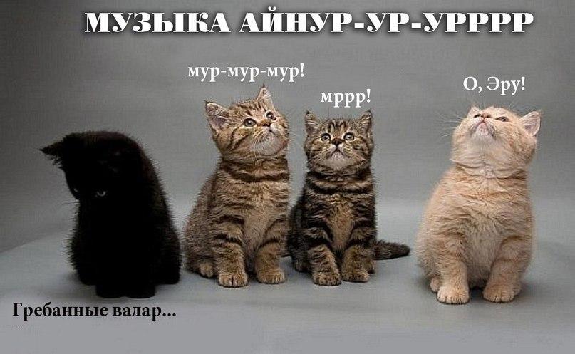 http://s9.uploads.ru/iMRB7.jpg