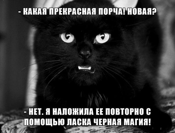 http://s9.uploads.ru/ijRs5.jpg