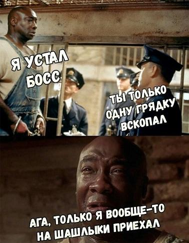 http://s9.uploads.ru/jwzlF.jpg