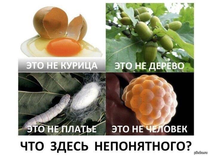 http://s9.uploads.ru/k5DlN.jpg
