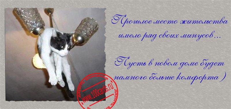 http://s9.uploads.ru/k5h3F.jpg