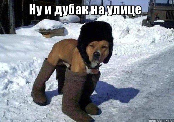 http://s9.uploads.ru/kwWJ0.jpg