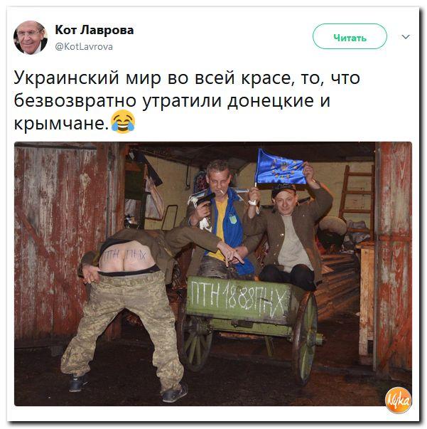 http://s9.uploads.ru/lOS8U.jpg