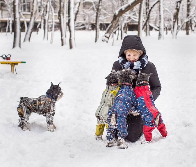 http://s9.uploads.ru/mbh59.jpg
