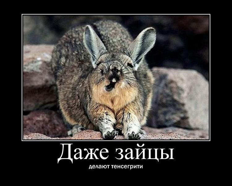 http://s9.uploads.ru/ps0g9.jpg