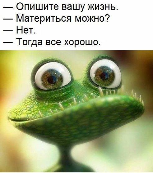 http://s9.uploads.ru/q8KWP.jpg