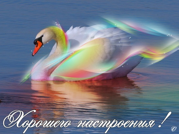 http://s9.uploads.ru/rBayN.jpg