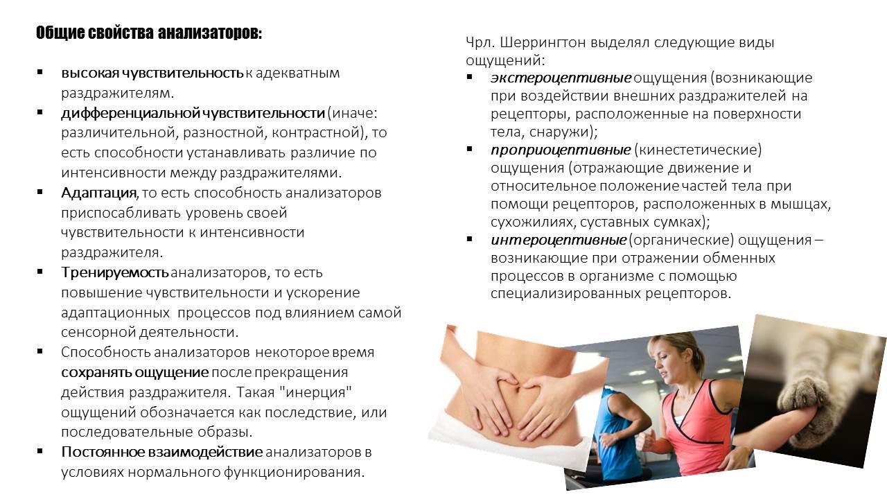 http://s9.uploads.ru/regdp.jpg