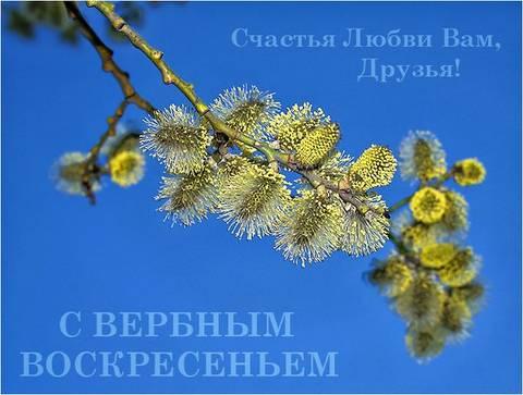 http://s9.uploads.ru/t/0K1io.jpg