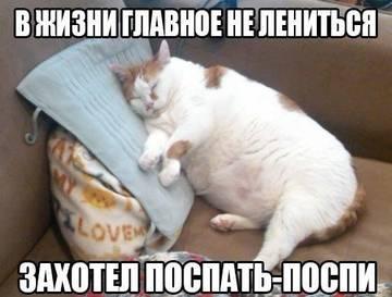 http://s9.uploads.ru/t/0NoTg.jpg