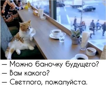 http://s9.uploads.ru/t/0WE5w.jpg