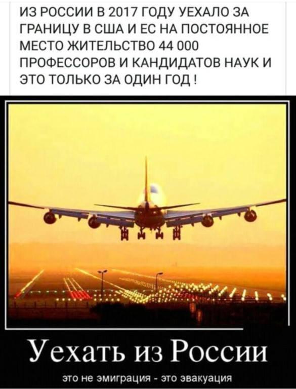 http://s9.uploads.ru/t/0mxgd.jpg