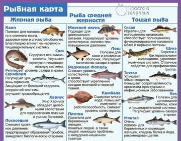 http://s9.uploads.ru/t/0nUBE.jpg