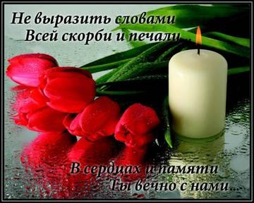 http://s9.uploads.ru/t/0zHBQ.jpg