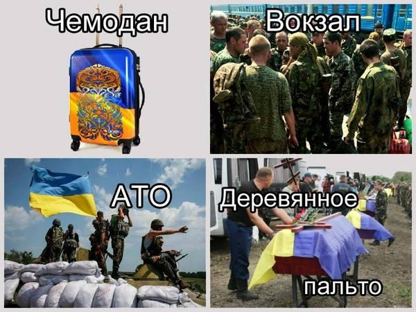 http://s9.uploads.ru/t/1TAJt.jpg