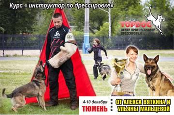 http://s9.uploads.ru/t/1XpQL.jpg