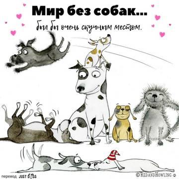 http://s9.uploads.ru/t/1hPoE.jpg