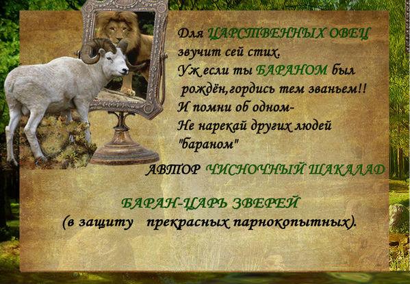 http://s9.uploads.ru/t/36V0q.jpg