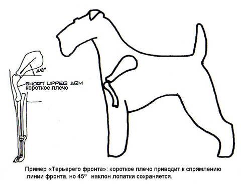 http://s9.uploads.ru/t/3P4ar.jpg
