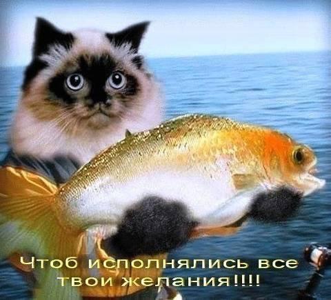 http://s9.uploads.ru/t/47p9y.jpg