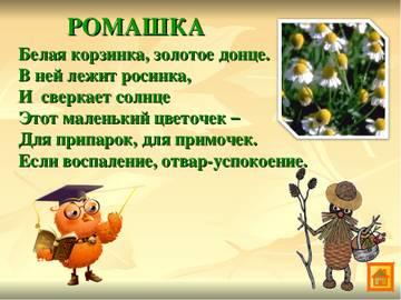 http://s9.uploads.ru/t/4J7do.jpg