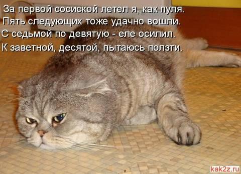 http://s9.uploads.ru/t/4dHX5.jpg