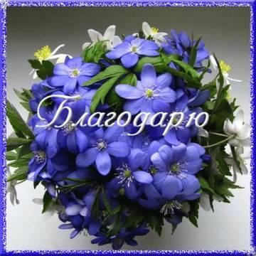 http://s9.uploads.ru/t/4lWYR.jpg
