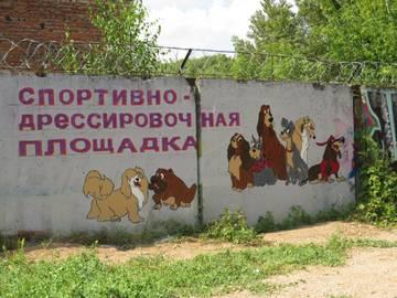 http://s9.uploads.ru/t/5KR6G.jpg