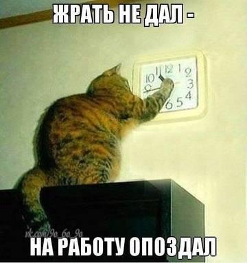 http://s9.uploads.ru/t/5T7Fc.jpg