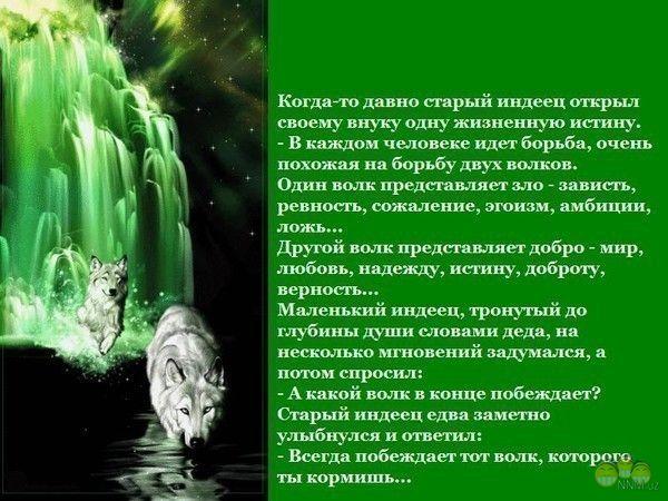 http://s9.uploads.ru/t/5WOgn.jpg