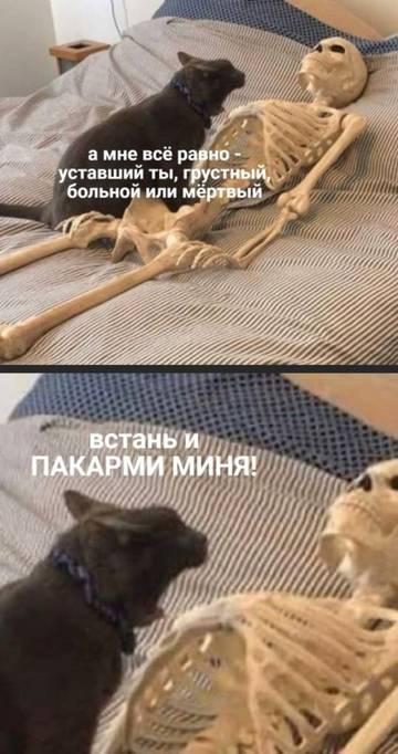 http://s9.uploads.ru/t/5eyRa.jpg