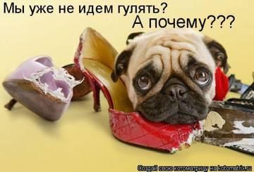 http://s9.uploads.ru/t/5v7ty.jpg