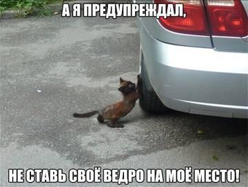 http://s9.uploads.ru/t/6WvhB.jpg