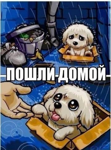 http://s9.uploads.ru/t/6Zj2O.jpg
