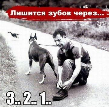 http://s9.uploads.ru/t/6kK95.jpg