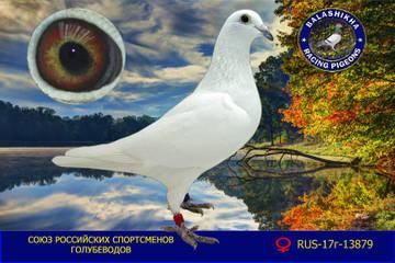 http://s9.uploads.ru/t/6pbAM.jpg