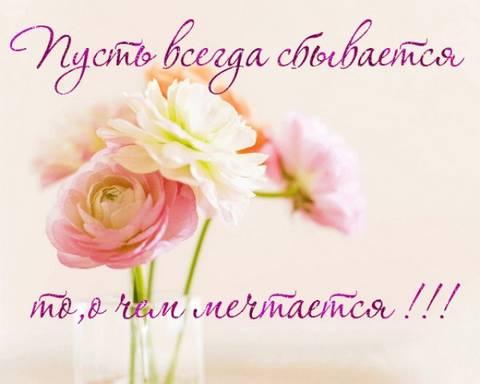 http://s9.uploads.ru/t/6uksg.jpg