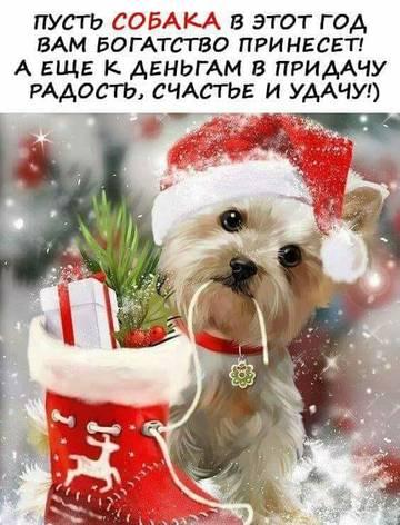 http://s9.uploads.ru/t/6xGVv.jpg