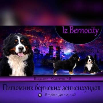 http://s9.uploads.ru/t/7C0Hu.jpg