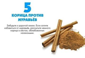 http://s9.uploads.ru/t/7zEJm.jpg