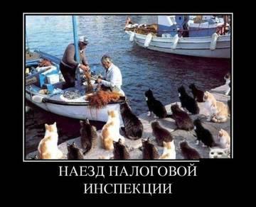 http://s9.uploads.ru/t/8AEUb.jpg