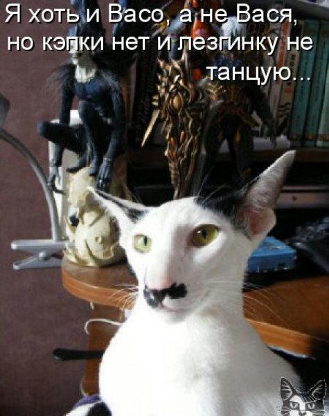 http://s9.uploads.ru/t/8haMI.jpg