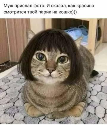 http://s9.uploads.ru/t/8pXHk.jpg