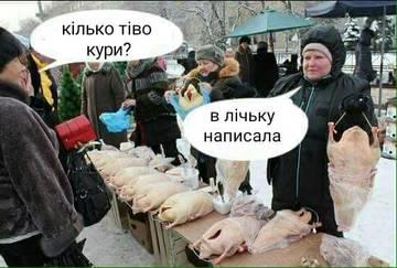 http://s9.uploads.ru/t/9IEea.jpg
