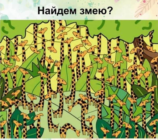 http://s9.uploads.ru/t/9J1V5.jpg